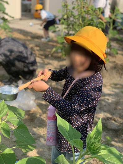 ひまわりに水をやる子ども