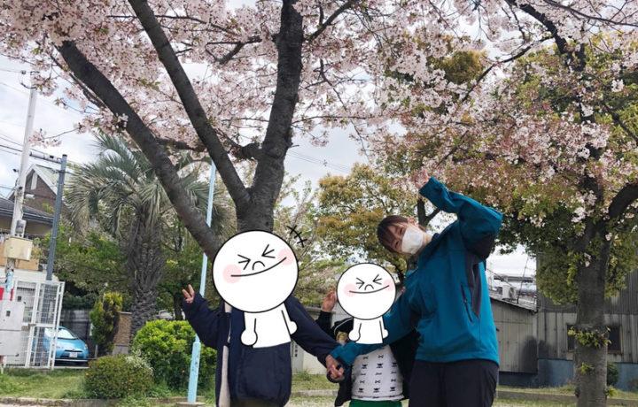 桜の木の下で笑顔の子ども