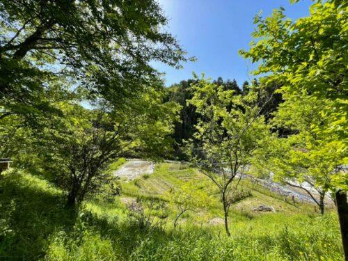 富田林の自然を守る会